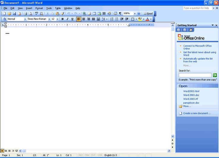 Microsoft Office 2003 word example
